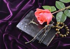 Rosa con la bibbia e le perle Immagine Stock