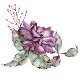 Rosa con le foglie in un mazzo Isolato su priorità bassa bianca Fotografia Stock