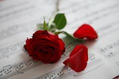 Rosa con melodia Fotografia Stock Libera da Diritti
