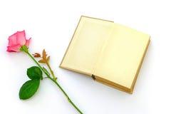 Rosa con un libro Immagini Stock