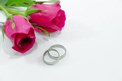 Rosa cor-de-rosa, contrata o anel com amor no dia de Valentim Fotos de Stock