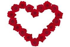 Rosa-cuore Fotografia Stock