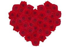 Rosa-cuore 2 Fotografie Stock