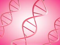 Rosa 3d DNA-Stränge Stockbilder
