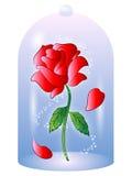 Rosa dall'illustrazione di vettore di bella e la bestia illustrazione di stock