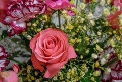 Rosa de Rosa e ramalhete das flores Imagens de Stock Royalty Free