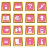Rosa de jardinagem dos ícones ilustração royalty free