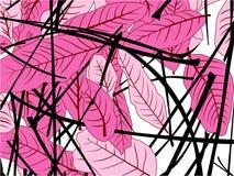 Rosa de la hoja stock de ilustración