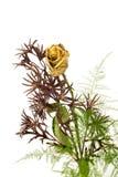 Rosa de oro y verdes Imágenes de archivo libres de regalías