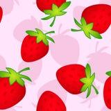 Rosa de Srawberry Fotos de Stock Royalty Free