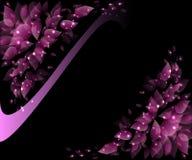 Rosa dei petali del fiore con un'incandescenza Fotografie Stock Libere da Diritti