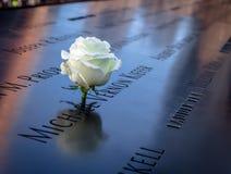 Rosa del blanco del cumpleaños cerca del nombre de la víctima grabada en el parapeto de bronce de 9/11 monumento en el World Trad Imagen de archivo
