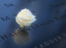 Rosa del blanco del cumpleaños cerca del nombre de la víctima grabada en el parapeto de bronce de 9/11 monumento en el World Trad Foto de archivo libre de regalías