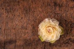 Rosa del blanco en el fondo de madera Fotografía de archivo