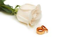 Rosa del blanco y anillos de bodas aislados en blanco Foto de archivo libre de regalías