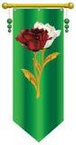 Rosa del blanco y del rojo Fotografía de archivo