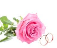 Rosa del color de rosa y anillos de bodas Fotos de archivo libres de regalías