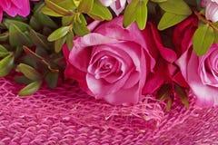Rosa del rosa en el arreglo Foto de archivo libre de regalías