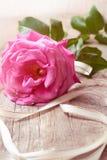 Rosa del rosa en fondo de madera Concepto para la tarjeta de felicitaciones imágenes de archivo libres de regalías