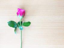 Rosa del rosa en la tabla de madera, foco suave foto de archivo libre de regalías