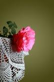 Rosa del escarlata Fotos de archivo libres de regalías