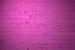 Rosa del fondo della parete di pietra Fotografie Stock Libere da Diritti