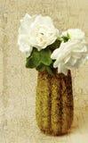 Rosa del jardín texturizada imagen de archivo