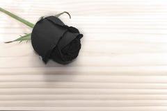 Rosa del negro en la tabla de madera, concepto del amor para las tarjetas del día de San Valentín Imagenes de archivo