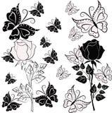 Rosa del nero e di bianco con le farfalle Fotografia Stock Libera da Diritti