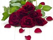 Rosa del rojo Imagenes de archivo