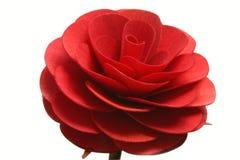 Rosa del rojo aislada Foto de archivo libre de regalías