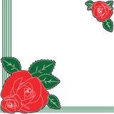 Rosa del rojo con diseño del fondo de las hojas Fotografía de archivo