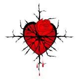 Rosa del rojo con el corazón de las espinas y las gotas de la sangre stock de ilustración