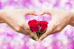 rosa del rojo del control de la mano Fotografía de archivo libre de regalías