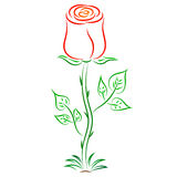 Rosa del rojo del extracto del vector del garabato Fotografía de archivo libre de regalías