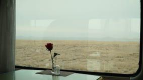 Rosa del rojo delante de la ventana imagen de archivo