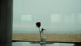 Rosa del rojo delante de la ventana en el tren imagen de archivo libre de regalías