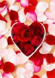 Rosa del rojo dentro del cuenco de la forma del corazón con el pétalo rosado por otra parte Imágenes de archivo libres de regalías