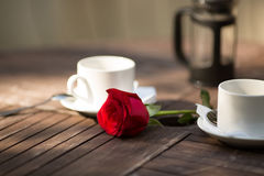 Rosa del rojo dos tazas en la tabla Fotos de archivo