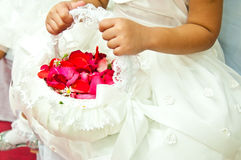 Rosa del rojo en cesta con la muchacha Foto de archivo libre de regalías