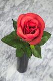 Rosa del rojo en florero negro en la tabla de mármol Imagenes de archivo
