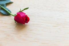 Rosa del rojo en fondo de madera imagenes de archivo