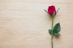 Rosa del rojo en fondo de madera Foto de archivo libre de regalías