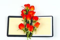 Rosa del rojo en un cuaderno y un lápiz en un fondo blanco Imagenes de archivo