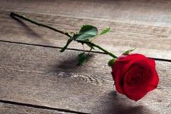 Rosa del rojo en una tabla de madera Fotografía de archivo