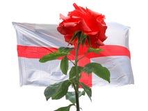 Rosa del rojo sobre la bandera inglesa de Inglaterra Imagen de archivo libre de regalías