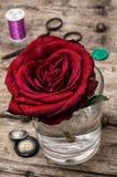 Rosa del rojo y accesorios y herramientas de costura Imágenes de archivo libres de regalías
