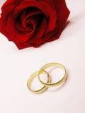 Rosa del rojo y anillos de bodas Imagen de archivo libre de regalías
