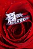 Rosa del rojo y anillos de diamante Imagen de archivo