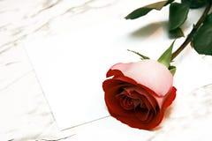 Rosa del rojo y la carta Imagen de archivo libre de regalías